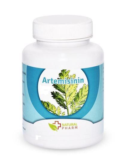 Obrázok Artemisinin prášok 10 g